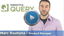 Learn more about Winshuttle Query
